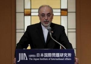 Iran's head of the country's Atomic Energy Organization, Ali Akbar Salehi speaks during a seminar at the Japan Institute of International Affairs in Tokyo, Japan, November 5, 2015.